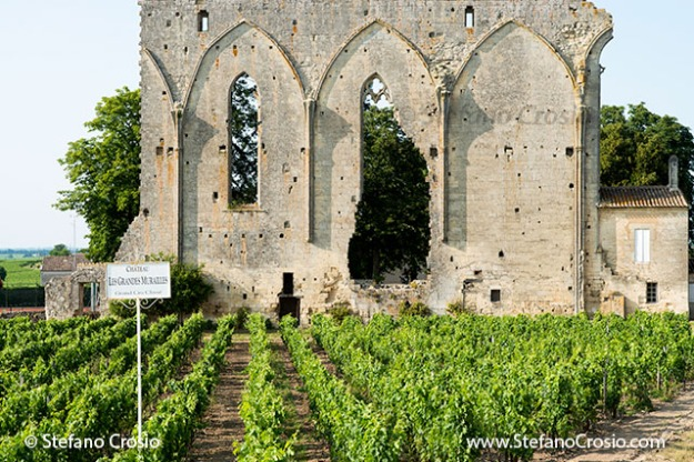 Saint Emilion: Les Grandes Murailles (the Big Wall) and the vineyards of Chateau Les Grandes Murailles