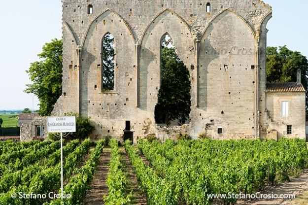 Saint Emilion: Les Grandes Murailles (the Big Wall) and the vineyards of Chateau Les Grandes Murailles