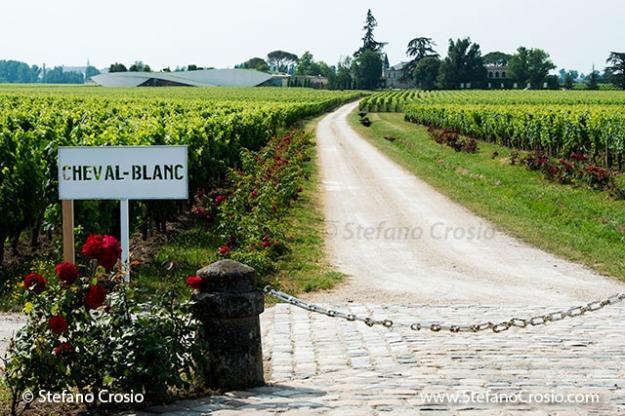 Saint Emilion: Chateau Cheval Blanc and its vineyards