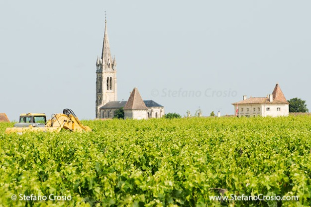 Saint Emilion: church emerging from the vineyards in Pomerol