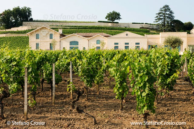 Saint Emilion: Chateau Pavie and its vineyards