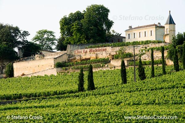 Saint Emilion: Clos La Madeleine and its vineyards
