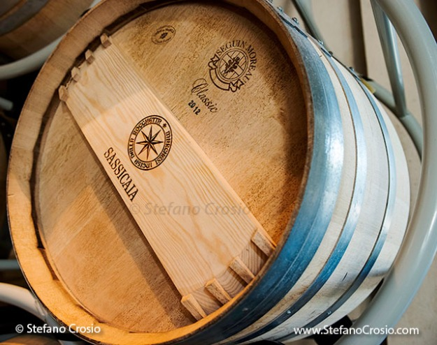 Italy, Bolgheri: Sassicaia French oak barrique cask