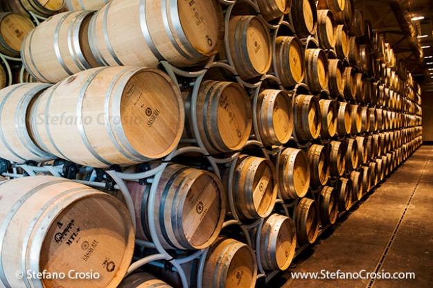 Italy, Bolgheri: Tenuta San Guido's Sassicaia aging cellar